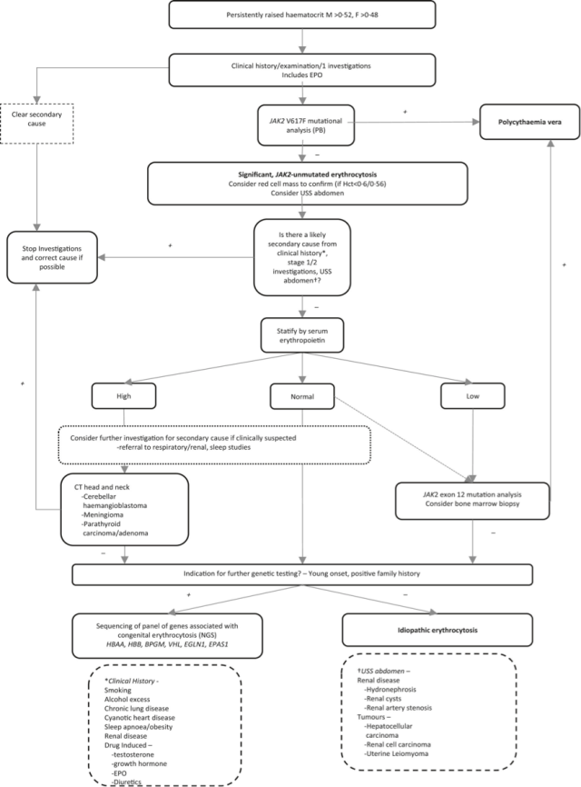 Polycythaemia algorithm
